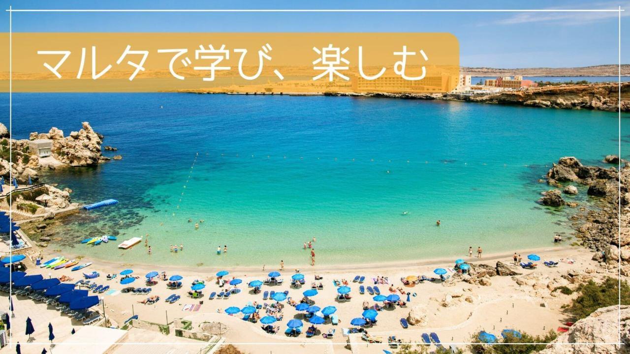 マルタで学び、楽しむ